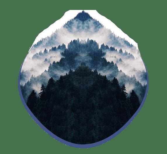landes_design_puyo